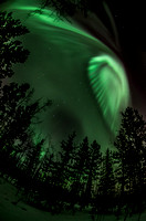 Northern Lights_Whitehorse 9